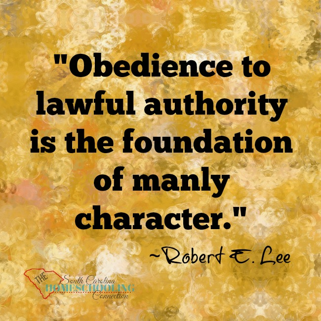 There are three accountability options in SC which you may use to homeschool. We encourage you to read the code of laws for yourself. Option 1 is through your local school district and is covered in Section 59-65-40. Option 2 is through SCAIHS and is covered in Section 59-65- 45. Option 3 is through an independent Homeschool Association and is covered in Section 59-65-47.