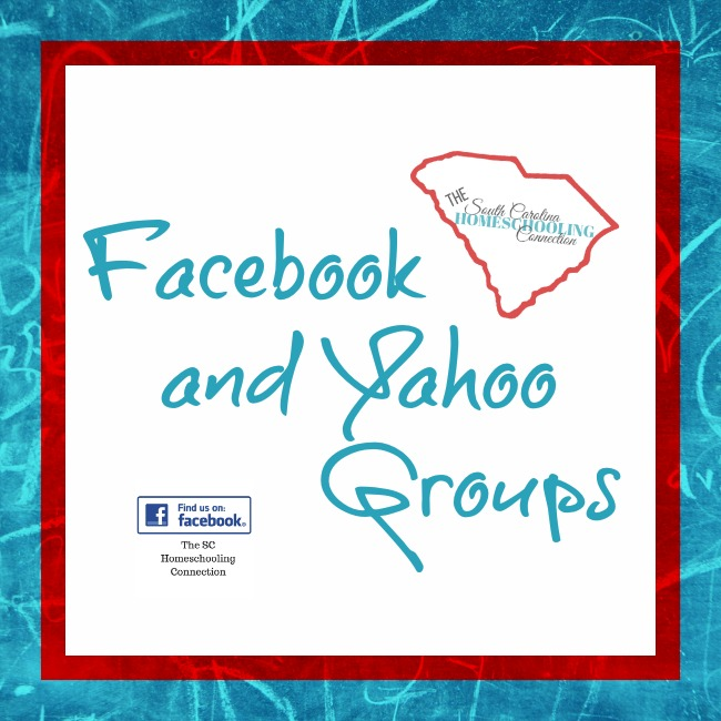 find local homeschool meetups and online support groups on Facebook and Yahoo.