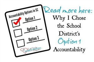 Option 1 read more about why I chose homeschool accountability thru the local school district.