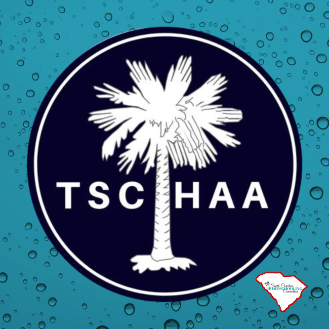The South Carolina Homeschool Accountability Association is a 3rd Option Accountability group in South Carolina. Here's a look at some of the services they offer.