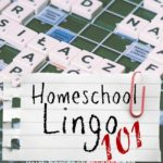 Homeschool Lingo in South Carolina. What are we talking about?