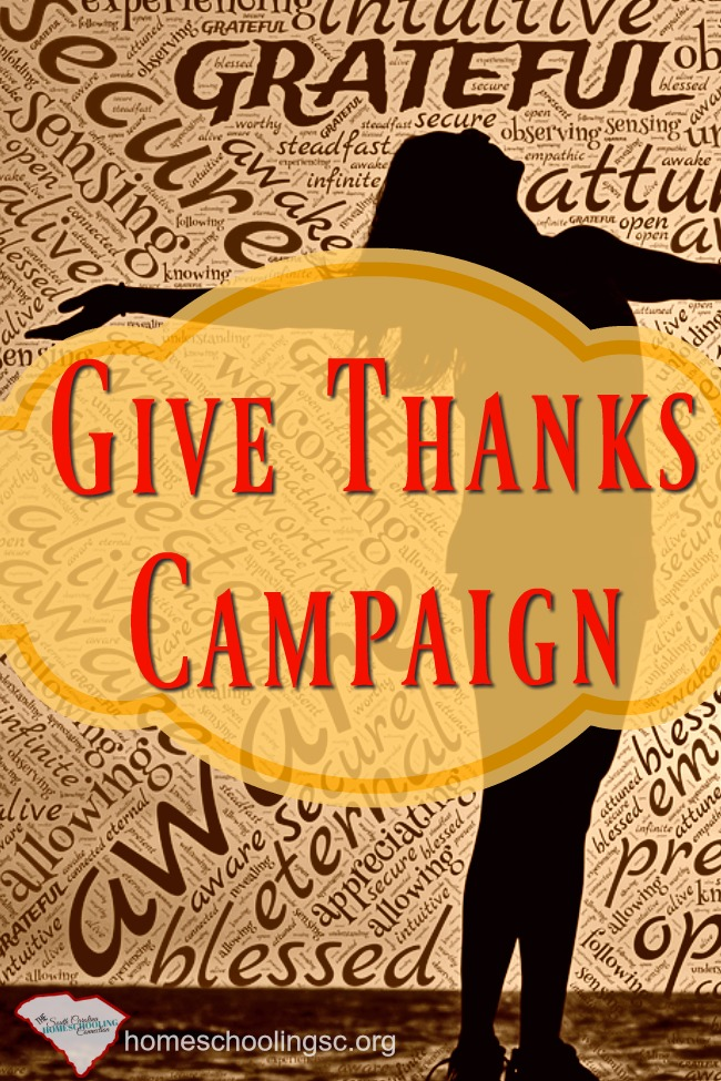 November is often when we take time to think of things for which we are grateful.  Let's use the opportunity to initiate a Give Thanks Campaign.