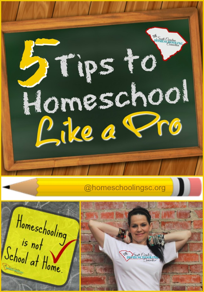5 Tips to Homeschool Like a Pro