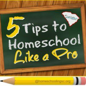 5 tips to homeschool like a pro