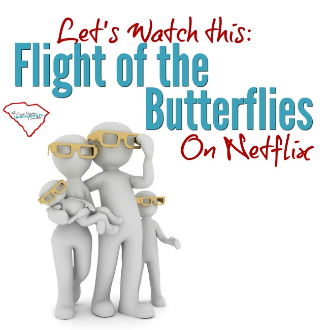 The Flight of the Butterflies