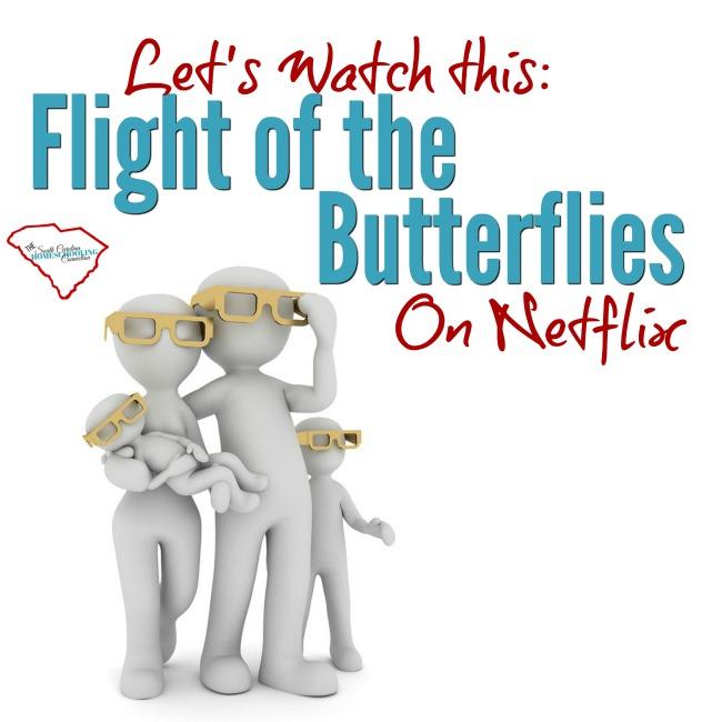 The Flight of the Butterflies
