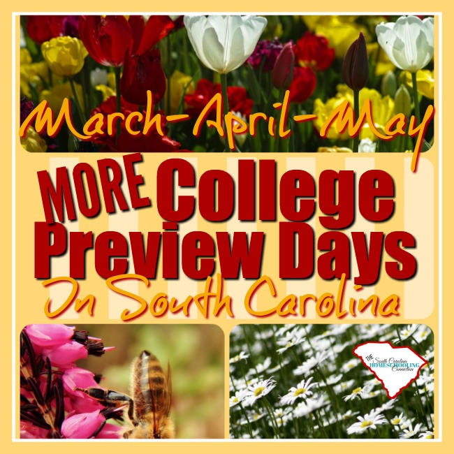 More Spring Preview Days 2017