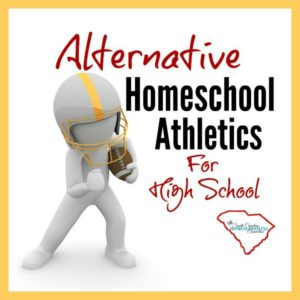 Homeschoolers in South Carolina have many alternatives to equal access. This is a list of all the independent sports programs to consider.