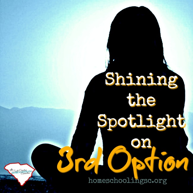 Shining the Spotlight on 3rd Option