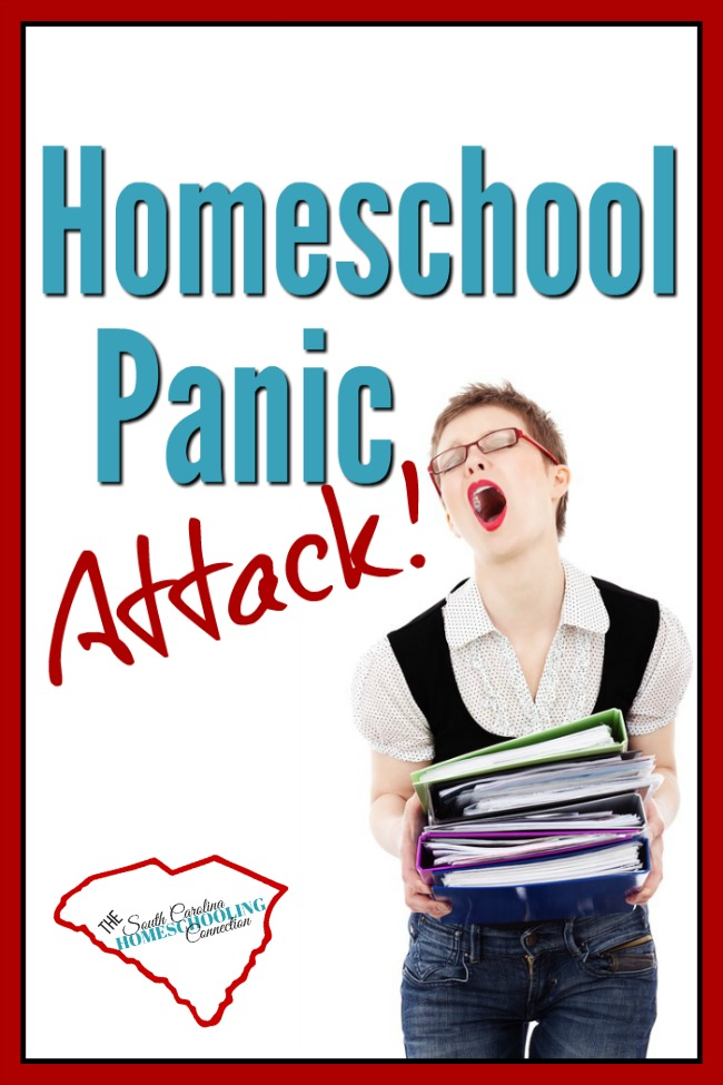 You're having a homeschool panic attack. You're questioning yourself. You realize you have no idea how to start...or what to do next. And the weight of responsibility suddenly feels very heavy. What if you screw up? What if they don't actually learn anything? What if you don't you know what you need to know? You know?