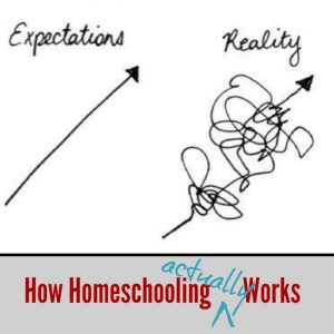 This is how homeschooling actually works