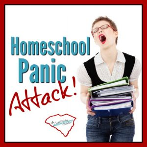 You're having a homeschool panic attack! The weight of responsibility feels heavy. That's completely normal.