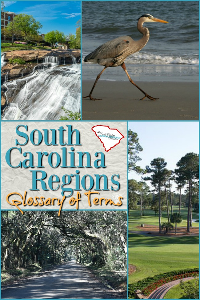 """Welcome to South Carolina! Let me be among the first to say, """"We're glad y'all are here!"""" Let's talk about some of the locational terms of South Carolina Regions."""
