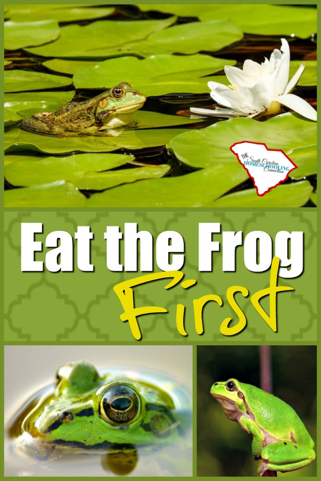 Eat the frog first? I'd actually prefer coffee thanks. But, then what's after the coffee? The menu says: Frog.
