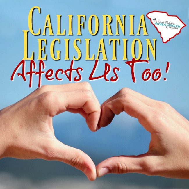 I think it's an important representation of solidarity. I think it's important moral support from homeschoolers everywhere. Because what's happening in California legislation affects us too!