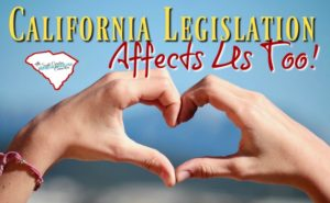 I think it's an important representation of solidarity. I think it's important moral support from homeschoolers everywhere. Because what's happening in California legislation affect us too!