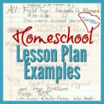I've collected some lesson plan examples from my own records. My basic content was always there, but the format changed from year to year. If you want to keep track with paper/pen or with an app/computer file. These examples can help you figure out the details to include