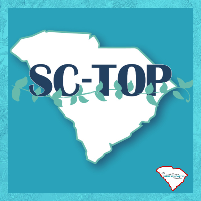 SC TOP Association is a 3rd Option Accountability group in South Carolina. Here's a look at some of the services they offer.