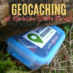 Geocache box in the woods